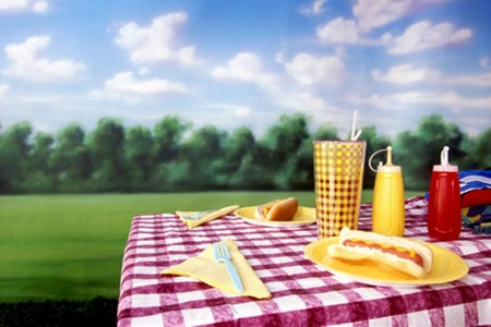 old fashioned picnic-1.jpg